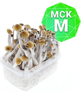 Mckennaii Growkit - Medium