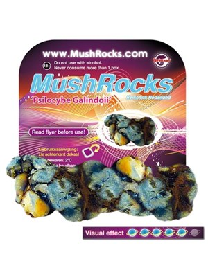 Mushrocks - Psilocybe Galindoi